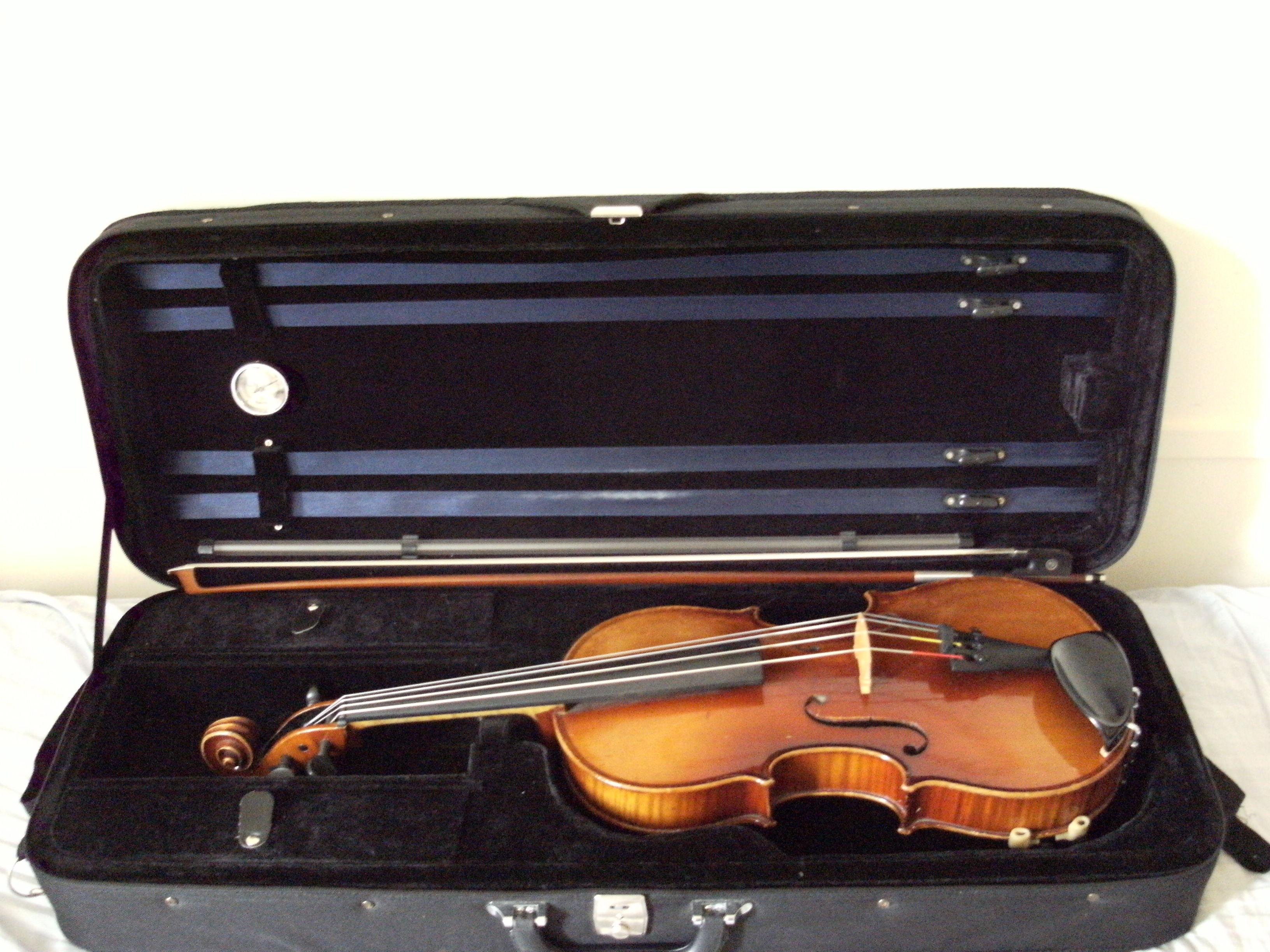 Martin Ash's viola